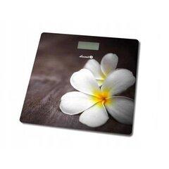 Huawei 51095EHL cena un informācija | Ķermeņa svari, bagāžas svari | 220.lv