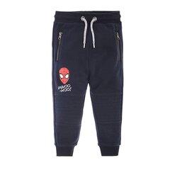 Cool Club спортивные штаны для мальчиков Человек-Паук (Spiderman), 6717287 цена и информация | Cool Club спортивные штаны для мальчиков Человек-Паук (Spiderman), 6717287 | 220.lv