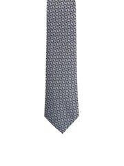 Vīriešu kaklasaite Accessories cena un informācija | Kaklasaites, tauriņi | 220.lv
