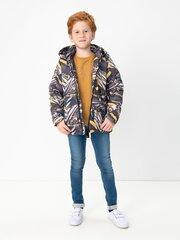 Zēnu jaka cena un informācija | Zēnu virsjakas | 220.lv
