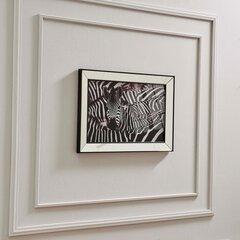 Reprodukcija Kalune Design Zebras 552NOS2165 cena un informācija | Gleznas | 220.lv